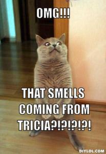 resized_horrorcat-meme-generator-omg-that-smells-coming-from-tricia-c8ffdd