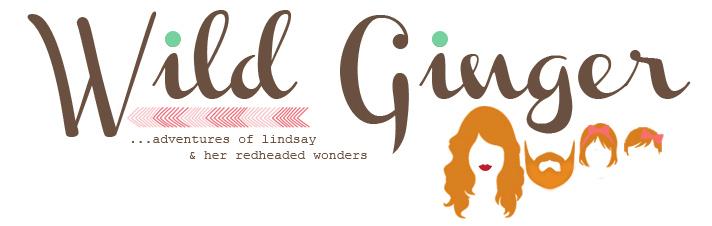 Lindsay's Blog Logo